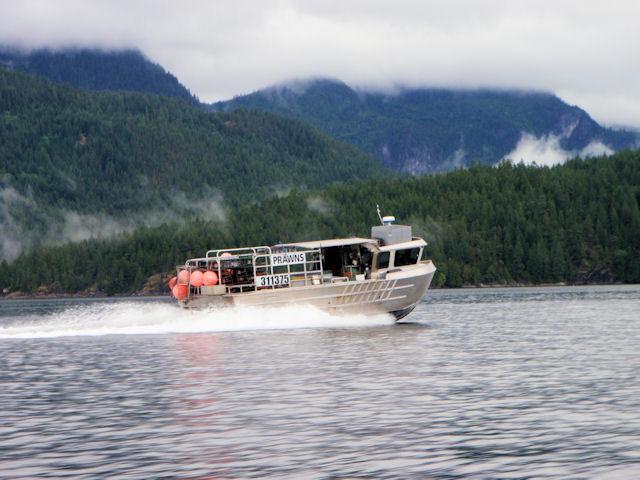 Gulf Rascal - 28 kts